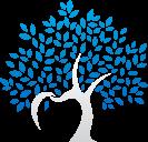 Edgewood Dental logo